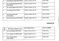 Change of Cadre in PMAD:: Data Control Officer/Computer Operator (B-16) to Senior Auditor (B-16) & Data Entry Operator (B-12) to Junior Auditor (B-11)